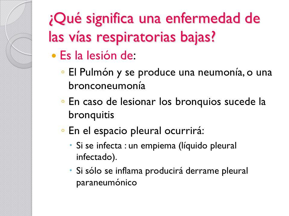 ¿Qué significa una enfermedad de las vías respiratorias bajas