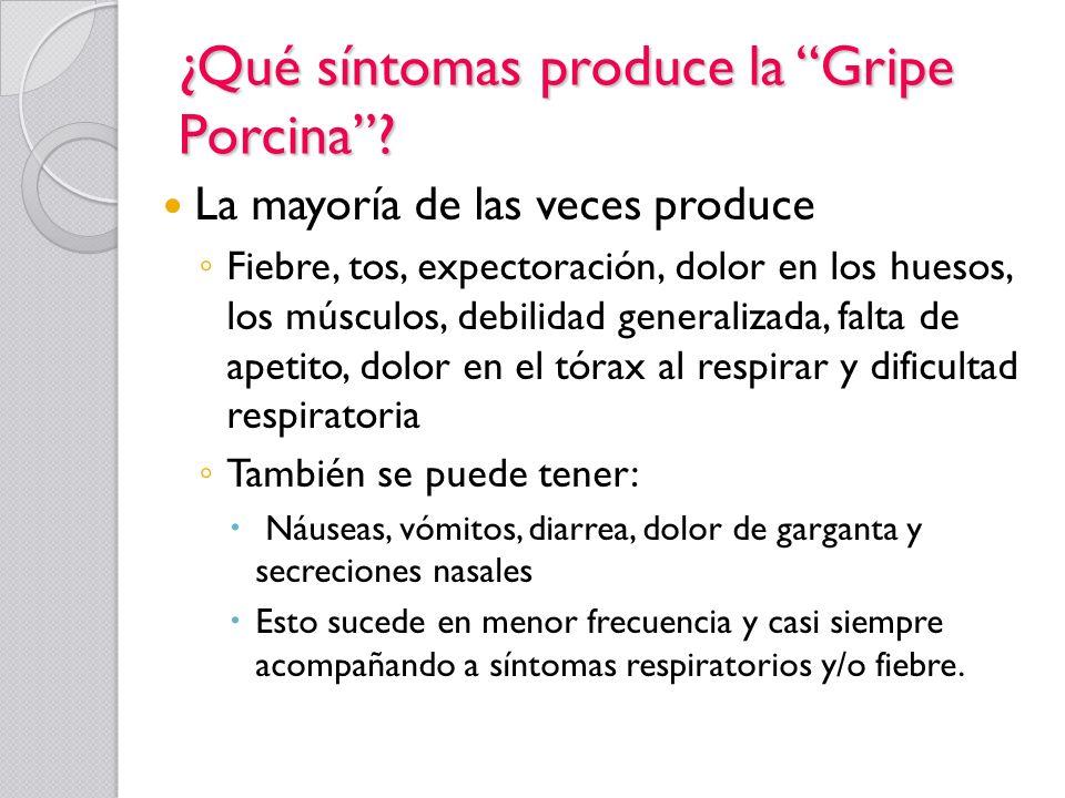 ¿Qué síntomas produce la Gripe Porcina