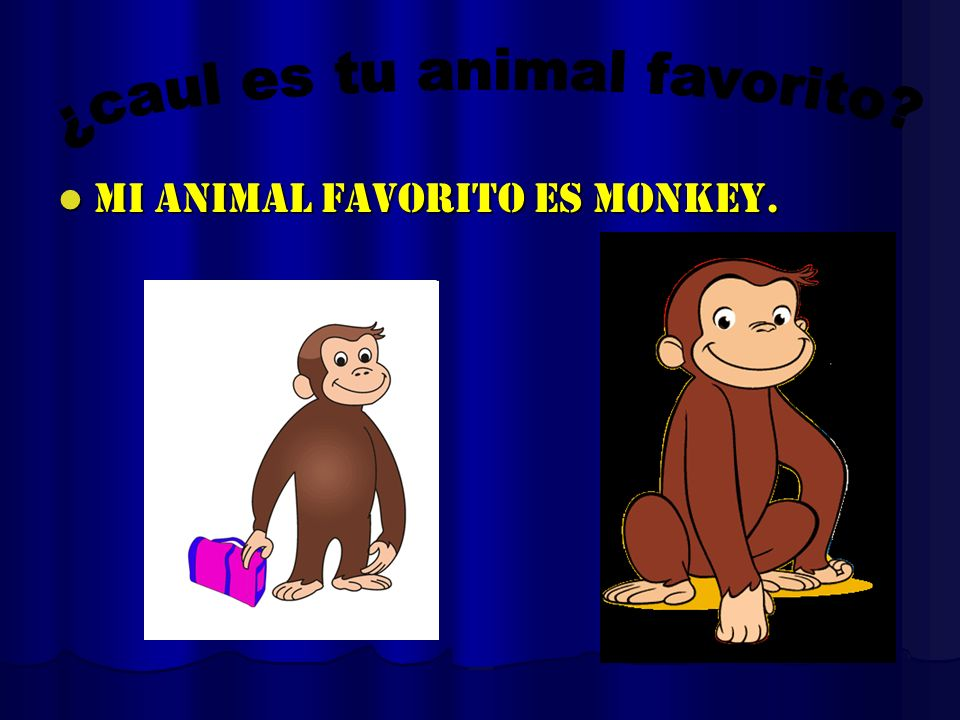 ¿caul es tu animal favorito