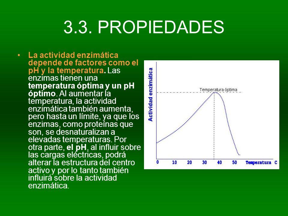 3.3. PROPIEDADES