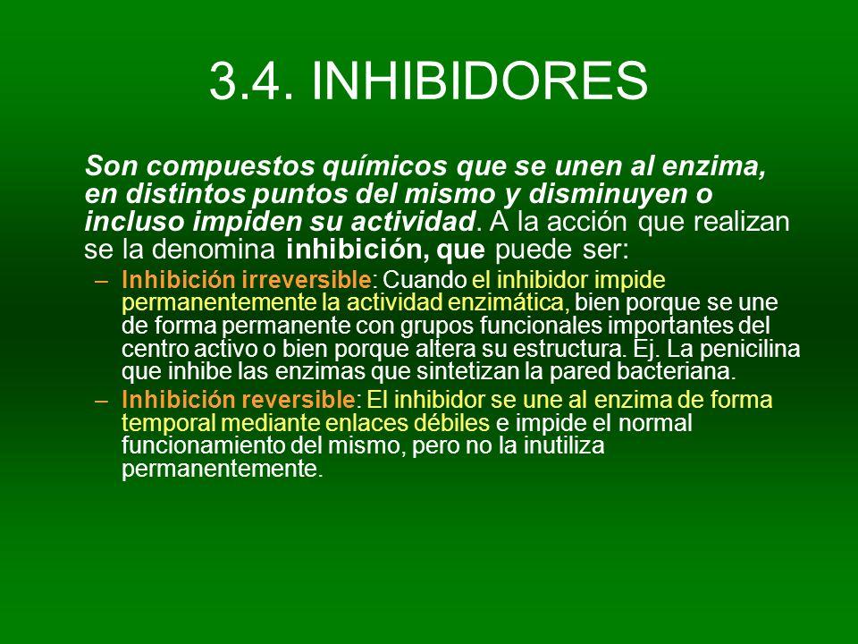 3.4. INHIBIDORES