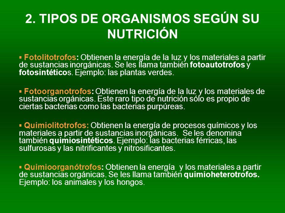 2. TIPOS DE ORGANISMOS SEGÚN SU NUTRICIÓN