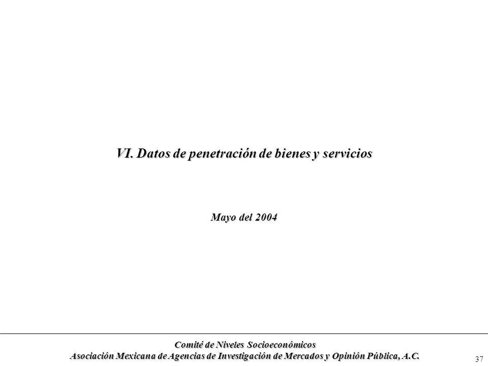 VI. Datos de penetración de bienes y servicios