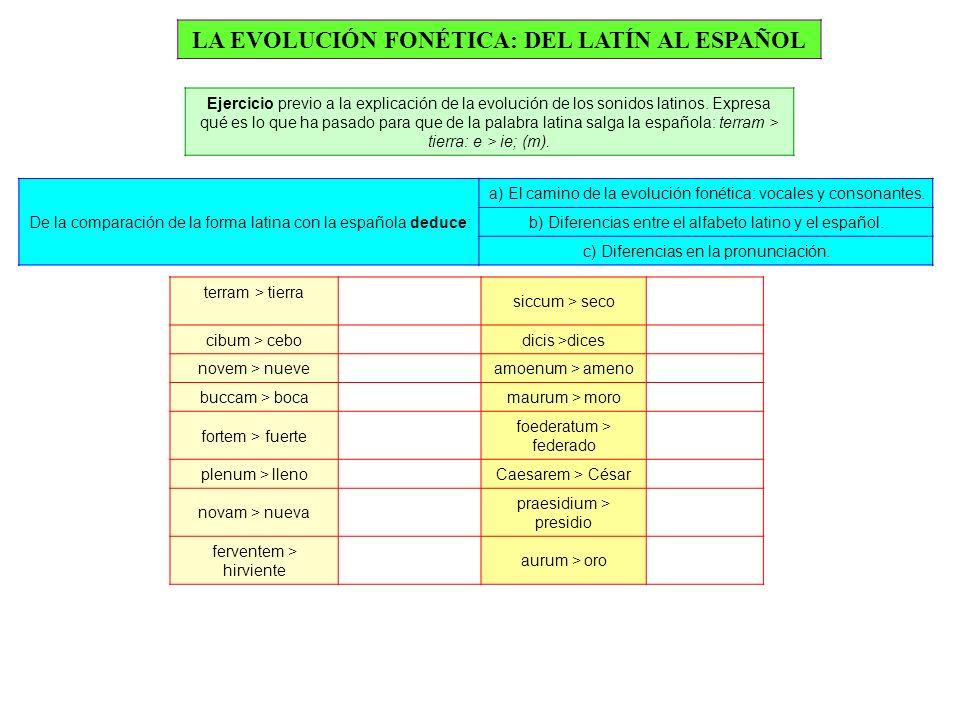 LA EVOLUCIÓN FONÉTICA: DEL LATÍN AL ESPAÑOL