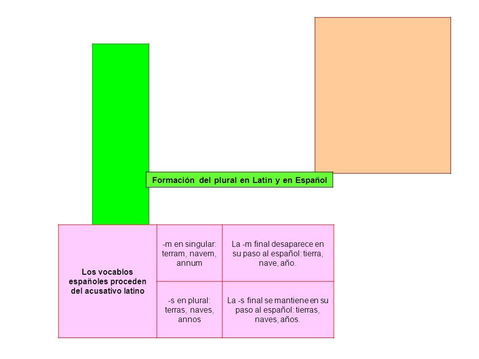 Formación del plural en Latín y en Español