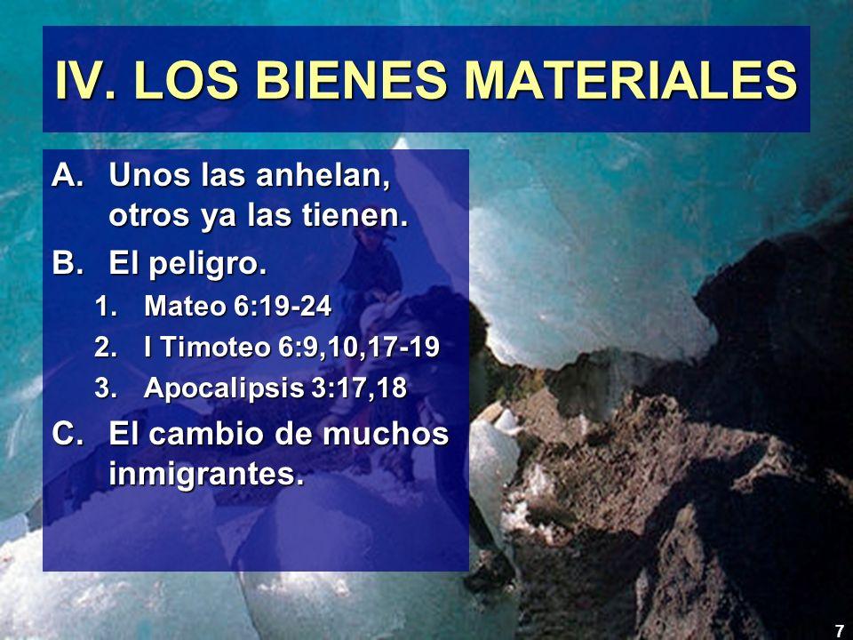 IV. LOS BIENES MATERIALES