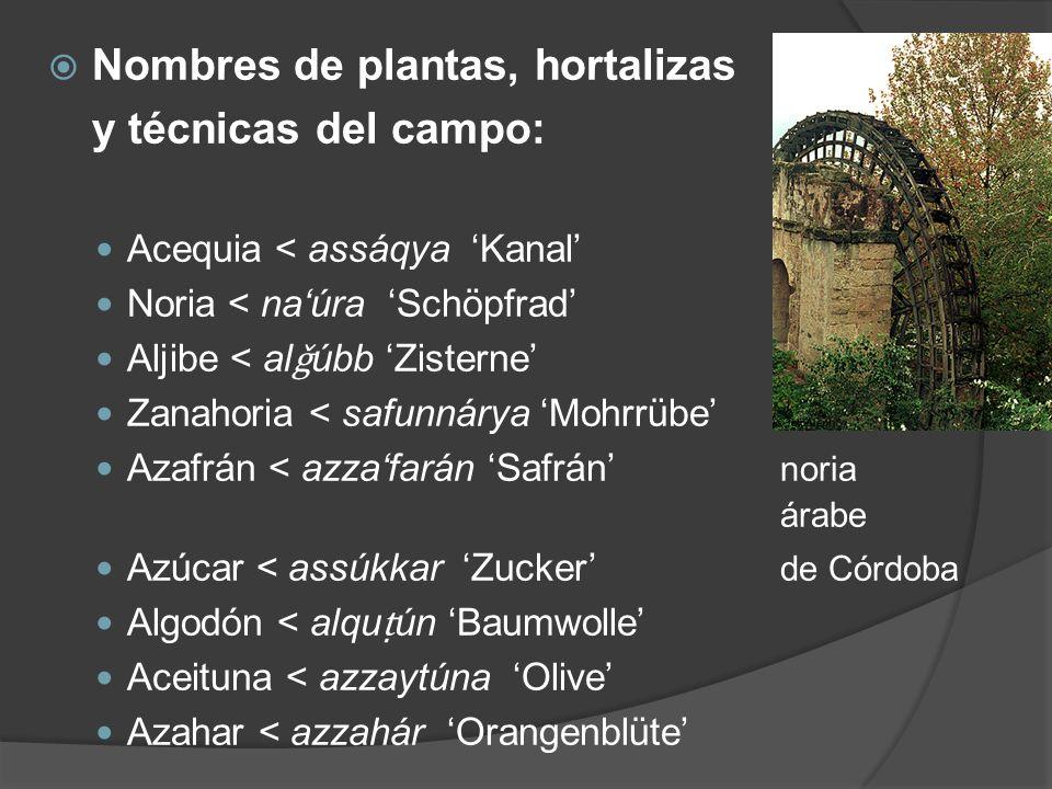 Nombres de plantas, hortalizas y técnicas del campo: