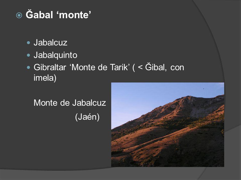 Ğabal 'monte' (Jaén) Jabalcuz Jabalquinto