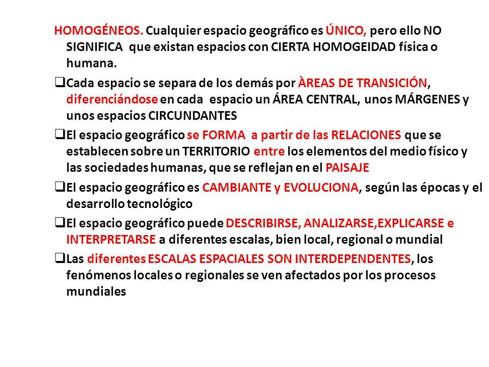 HOMOGÉNEOS. Cualquier espacio geográfico es ÚNICO, pero ello NO SIGNIFICA que existan espacios con CIERTA HOMOGEIDAD física o humana.