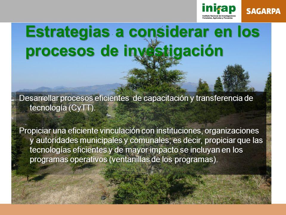 Estrategias a considerar en los procesos de investigación