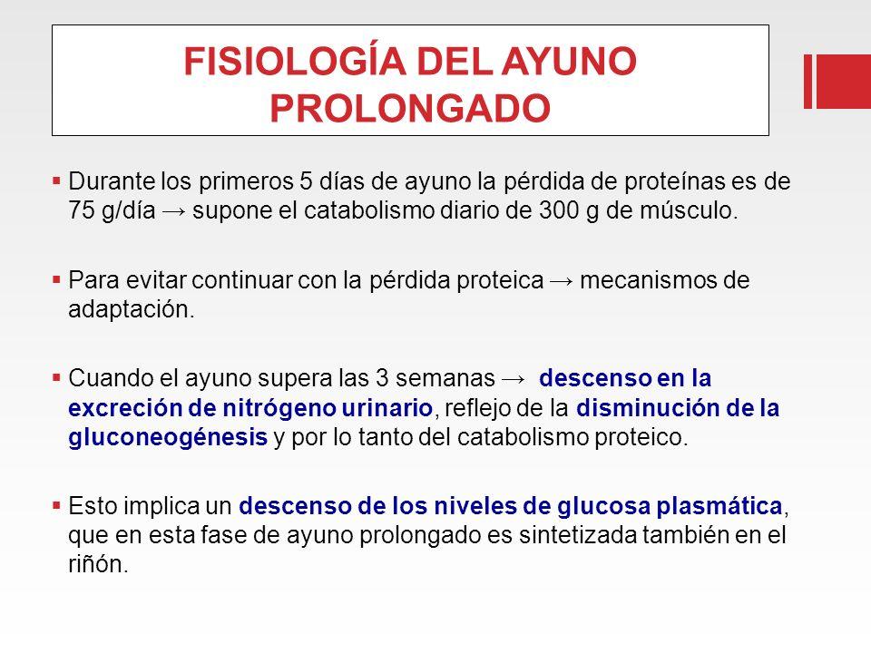 FISIOLOGÍA DEL AYUNO PROLONGADO