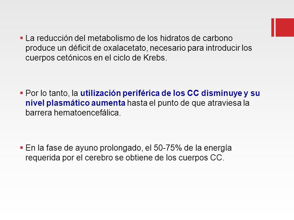 La reducción del metabolismo de los hidratos de carbono produce un déficit de oxalacetato, necesario para introducir los cuerpos cetónicos en el ciclo de Krebs.