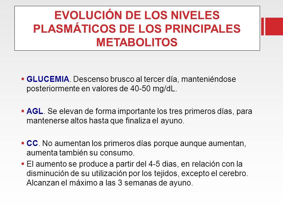 EVOLUCIÓN DE LOS NIVELES PLASMÁTICOS DE LOS PRINCIPALES METABOLITOS