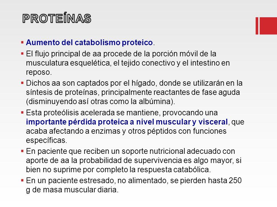 PROTEÍNAS Aumento del catabolismo proteico.