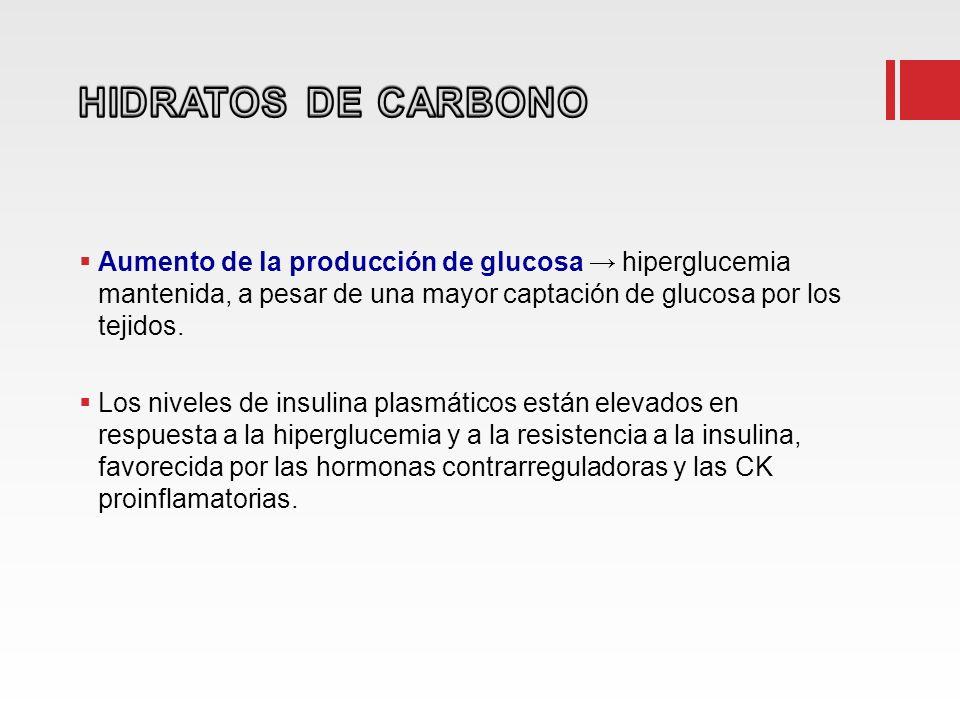 HIDRATOS DE CARBONO Aumento de la producción de glucosa → hiperglucemia mantenida, a pesar de una mayor captación de glucosa por los tejidos.