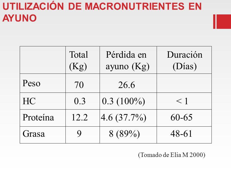 COMPOSICIÓN CORPORAL UTILIZACIÓN DE MACRONUTRIENTES EN AYUNO