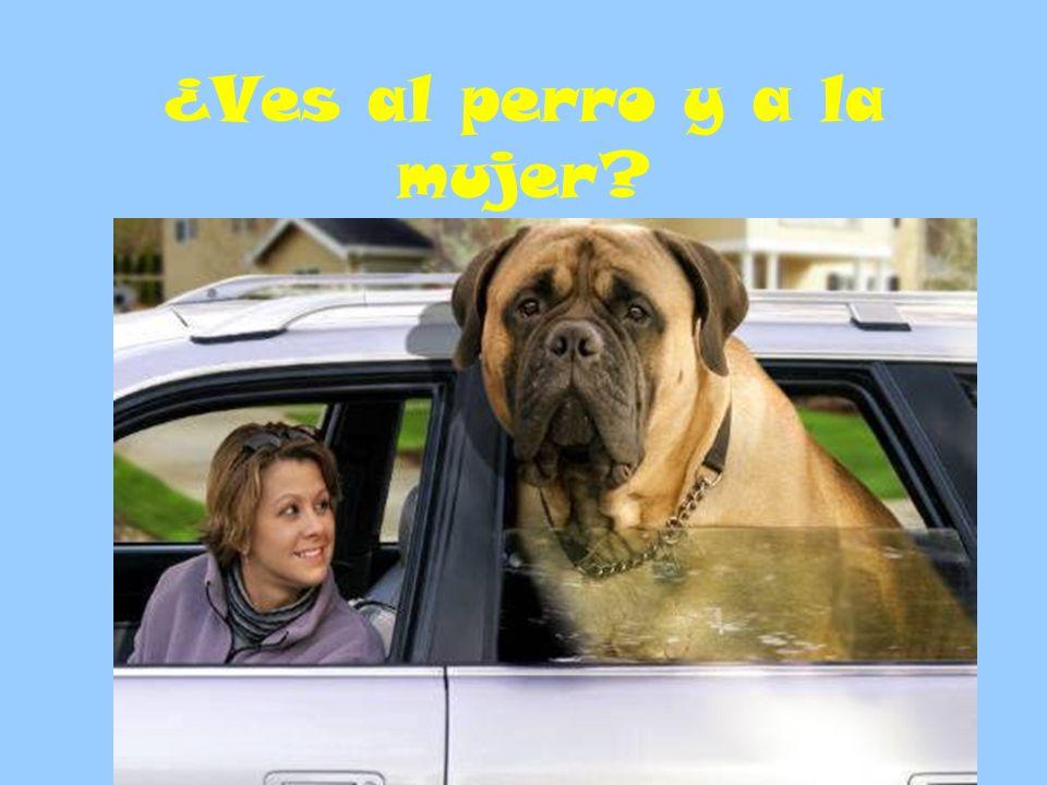 ¿Ves al perro y a la mujer