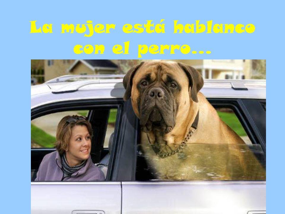 La mujer está hablanco con el perro…
