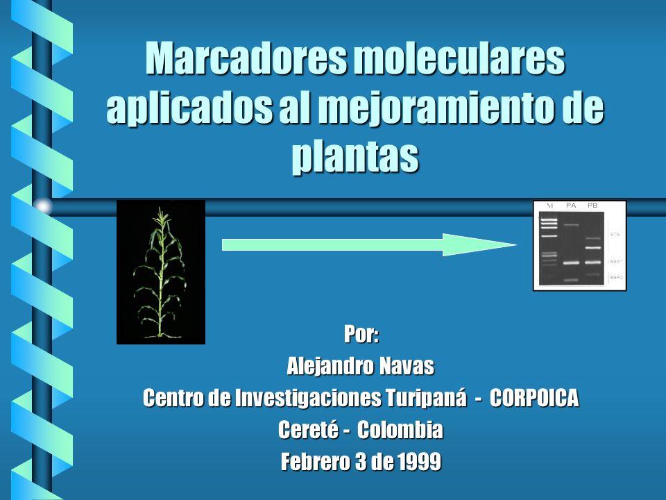 Marcadores moleculares aplicados al mejoramiento de plantas