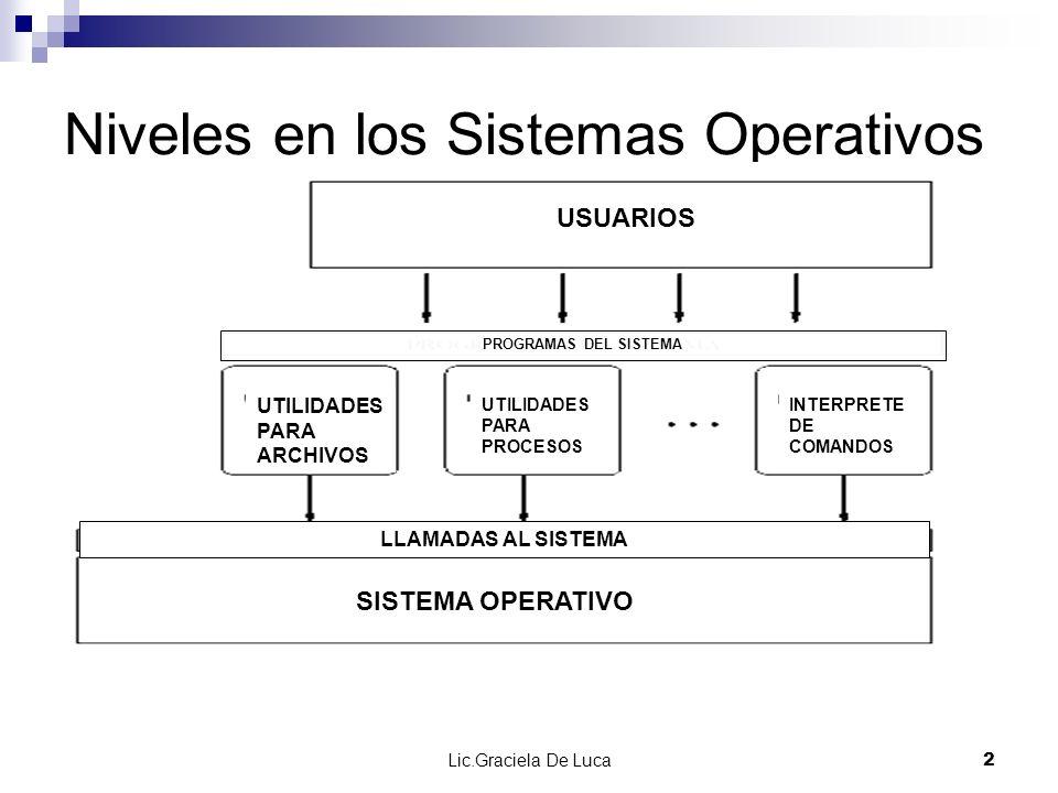 Niveles en los Sistemas Operativos