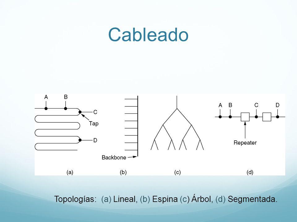 Topologías: (a) Lineal, (b) Espina (c) Árbol, (d) Segmentada.