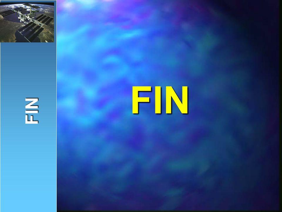 FIN FIN