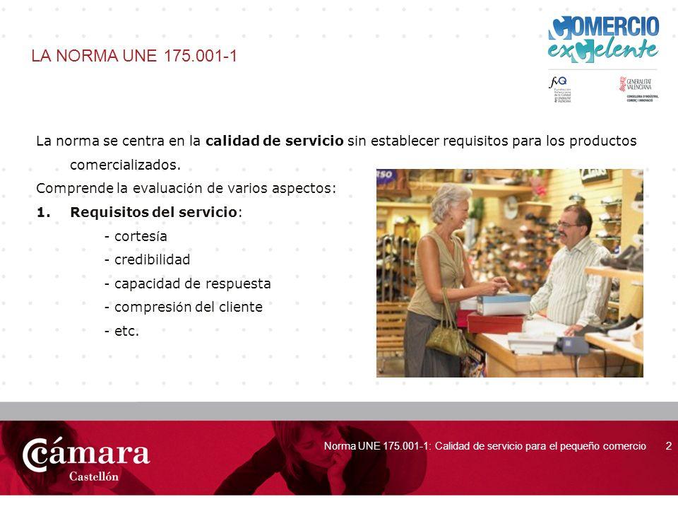 LA NORMA UNE 175.001-1 La norma se centra en la calidad de servicio sin establecer requisitos para los productos comercializados.