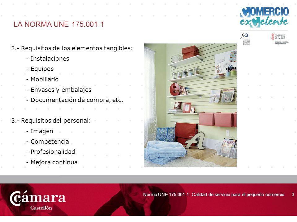 LA NORMA UNE 175.001-1 2.- Requisitos de los elementos tangibles: - Instalaciones. - Equipos. - Mobiliario.
