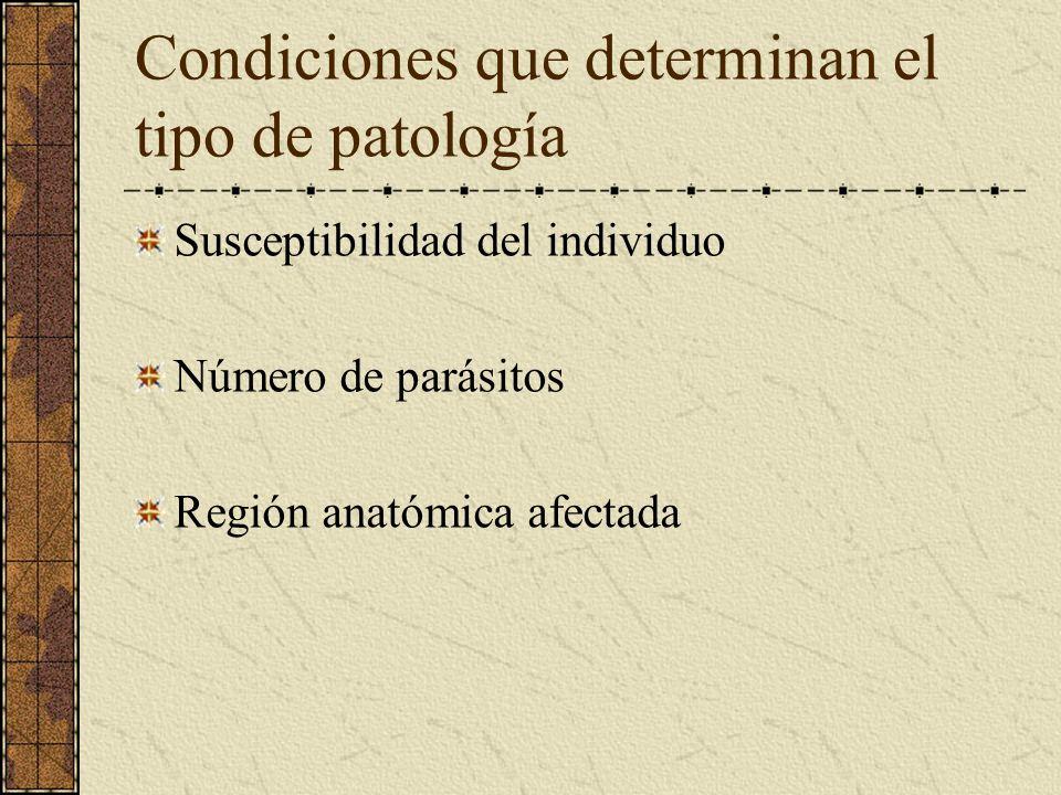 Condiciones que determinan el tipo de patología