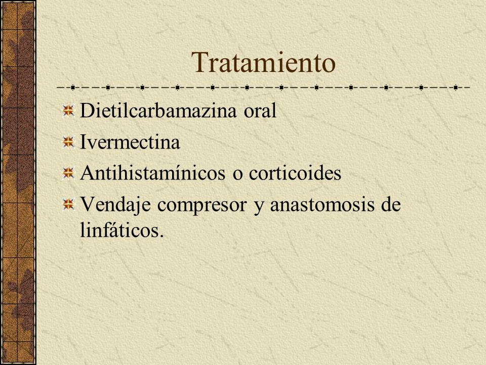 Tratamiento Dietilcarbamazina oral Ivermectina