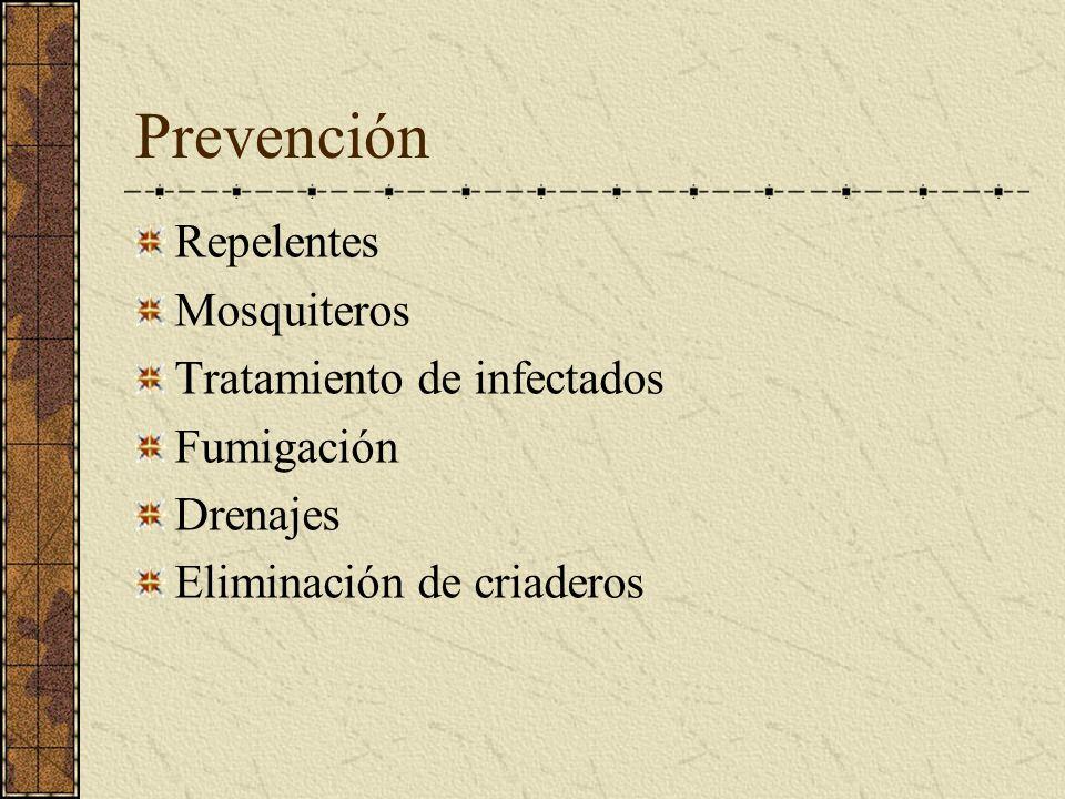 Prevención Repelentes Mosquiteros Tratamiento de infectados Fumigación