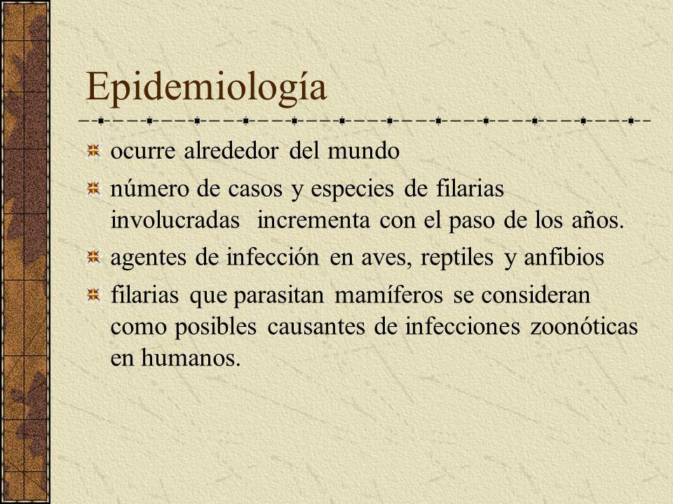 Epidemiología ocurre alrededor del mundo