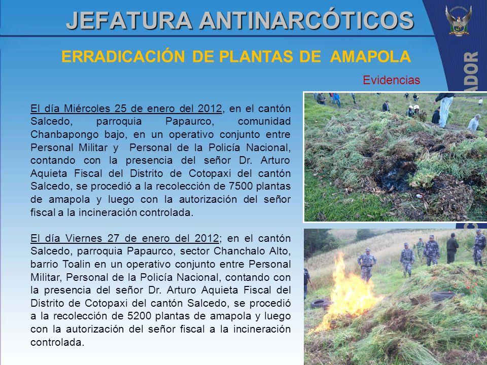 JEFATURA ANTINARCÓTICOS ERRADICACIÓN DE PLANTAS DE AMAPOLA