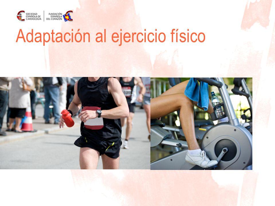 Adaptación al ejercicio físico