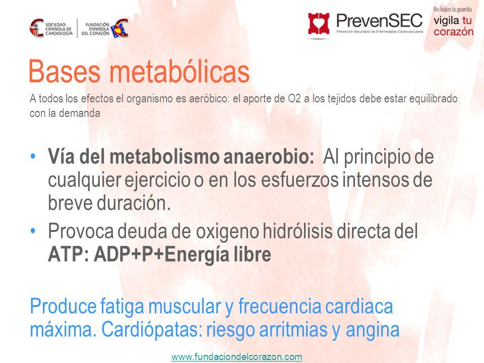 Bases metabólicas A todos los efectos el organismo es aeróbico: el aporte de O2 a los tejidos debe estar equilibrado con la demanda.