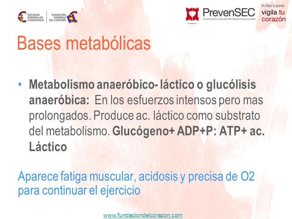 Bases metabólicas