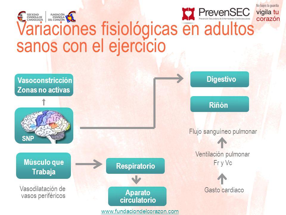 Variaciones fisiológicas en adultos sanos con el ejercicio