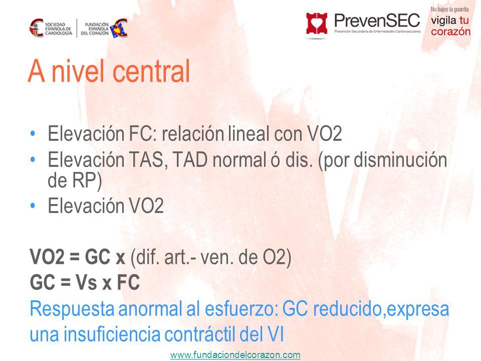 A nivel central Elevación FC: relación lineal con VO2