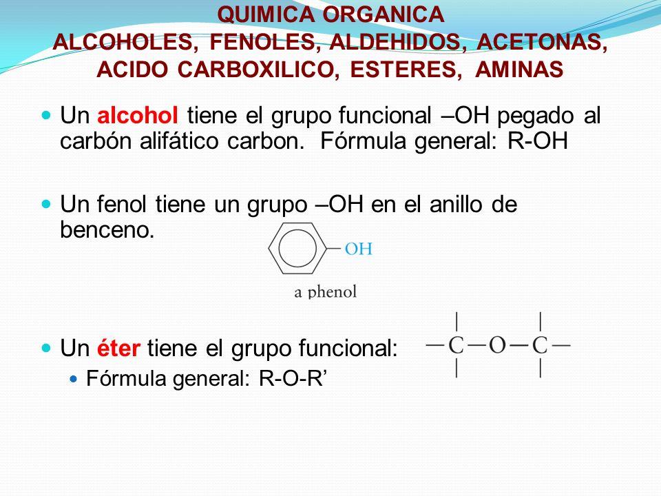 Un fenol tiene un grupo –OH en el anillo de benceno.