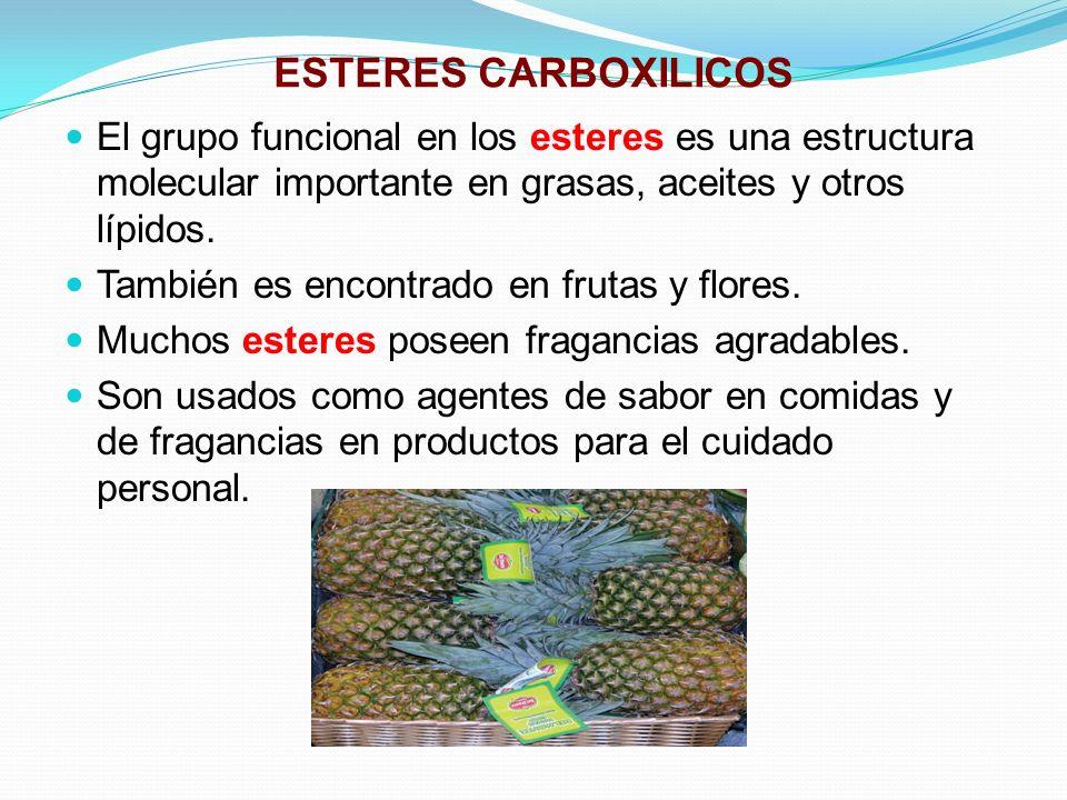 ESTERES CARBOXILICOS El grupo funcional en los esteres es una estructura molecular importante en grasas, aceites y otros lípidos.