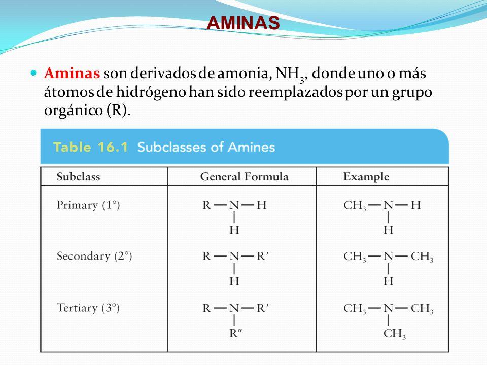 AMINAS Aminas son derivados de amonia, NH3, donde uno o más átomos de hidrógeno han sido reemplazados por un grupo orgánico (R).