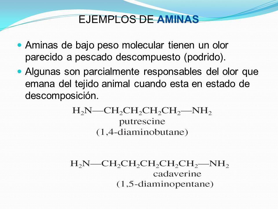 EJEMPLOS DE AMINAS Aminas de bajo peso molecular tienen un olor parecido a pescado descompuesto (podrido).