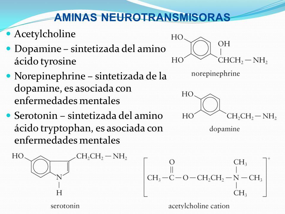 AMINAS NEUROTRANSMISORAS