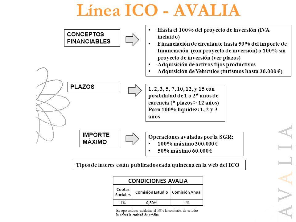Línea ICO - AVALIA CONDICIONES AVALIA