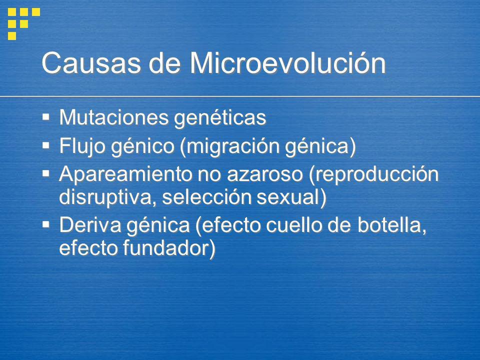 Causas de Microevolución