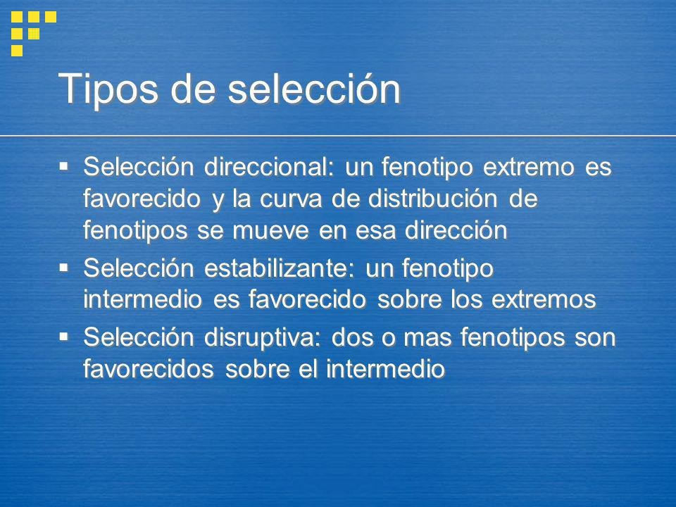 Tipos de selección Selección direccional: un fenotipo extremo es favorecido y la curva de distribución de fenotipos se mueve en esa dirección.
