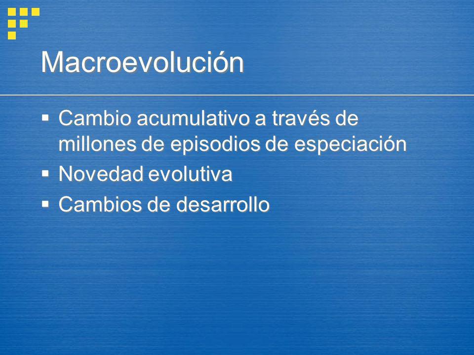 Macroevolución Cambio acumulativo a través de millones de episodios de especiación. Novedad evolutiva.