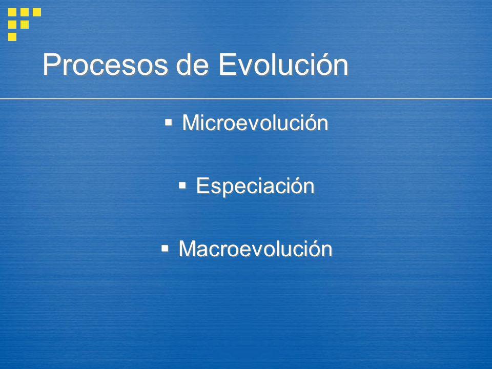 Procesos de Evolución Microevolución Especiación Macroevolución