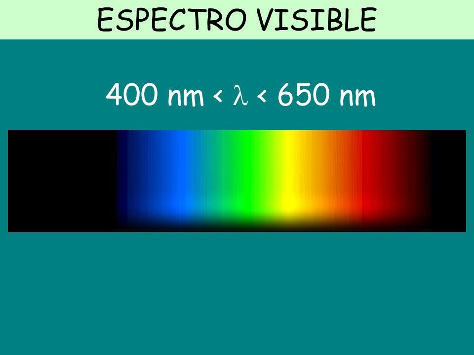 ESPECTRO VISIBLE 400 nm <  < 650 nm