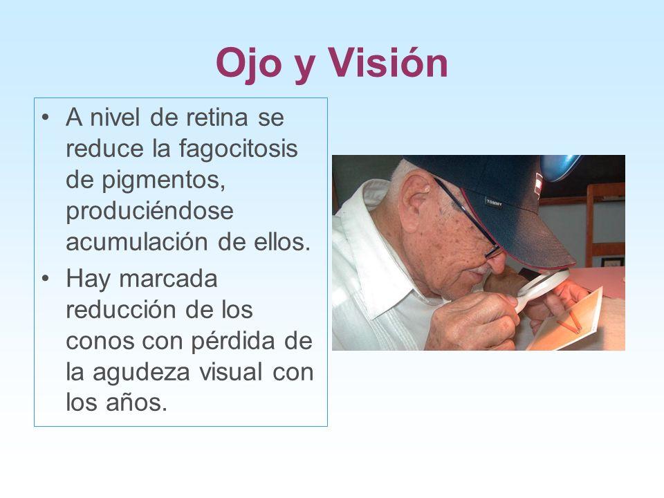 Ojo y Visión A nivel de retina se reduce la fagocitosis de pigmentos, produciéndose acumulación de ellos.